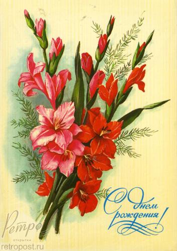Гладиолусы для открытки